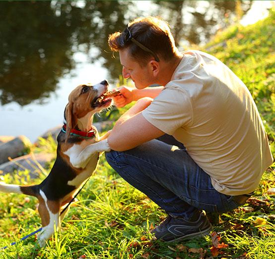 man-kneeling-with-happy-beagle